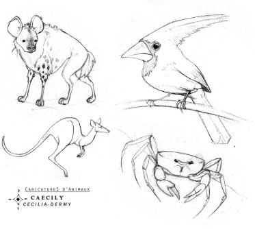 Caricatures d'Animaux